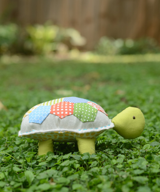 Hexie the Turtle