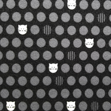 low-res-Cats-black